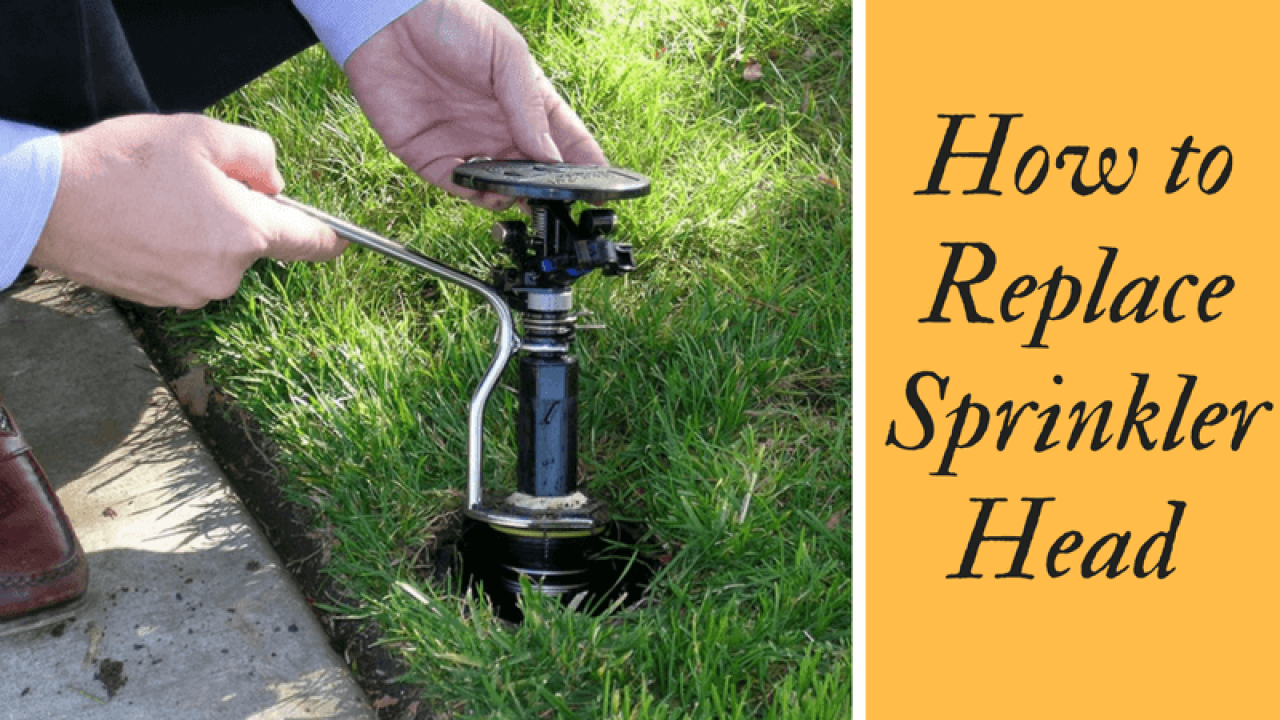 How to Replace Sprinkler Head? - Easiest Way to Change