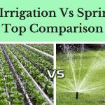 Drip Irrigation Vs Sprinkler- Top Comparison