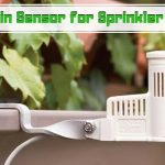 Best Rain Sensor for Sprinkler System