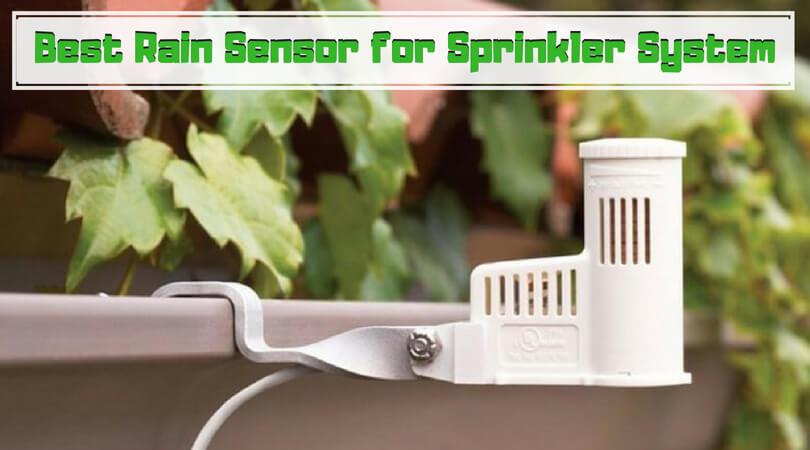 Best Rain Sensor for Sprinkler System
