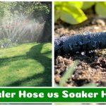 Sprinkler Hose vs Soaker Hose